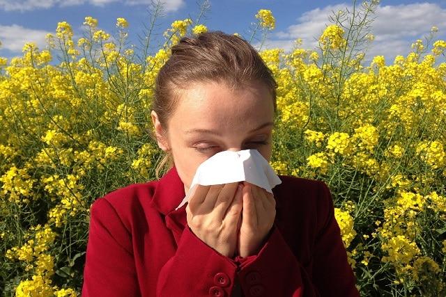 Saiba como identificar alergias e intolerância alimentar